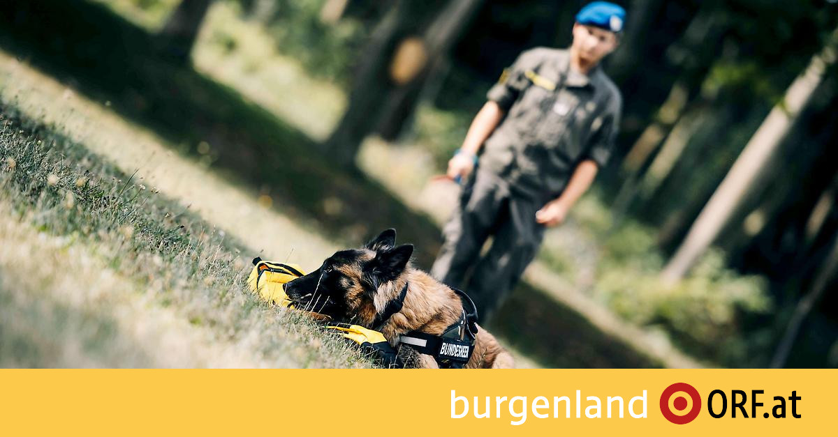 burgenland.orf.at