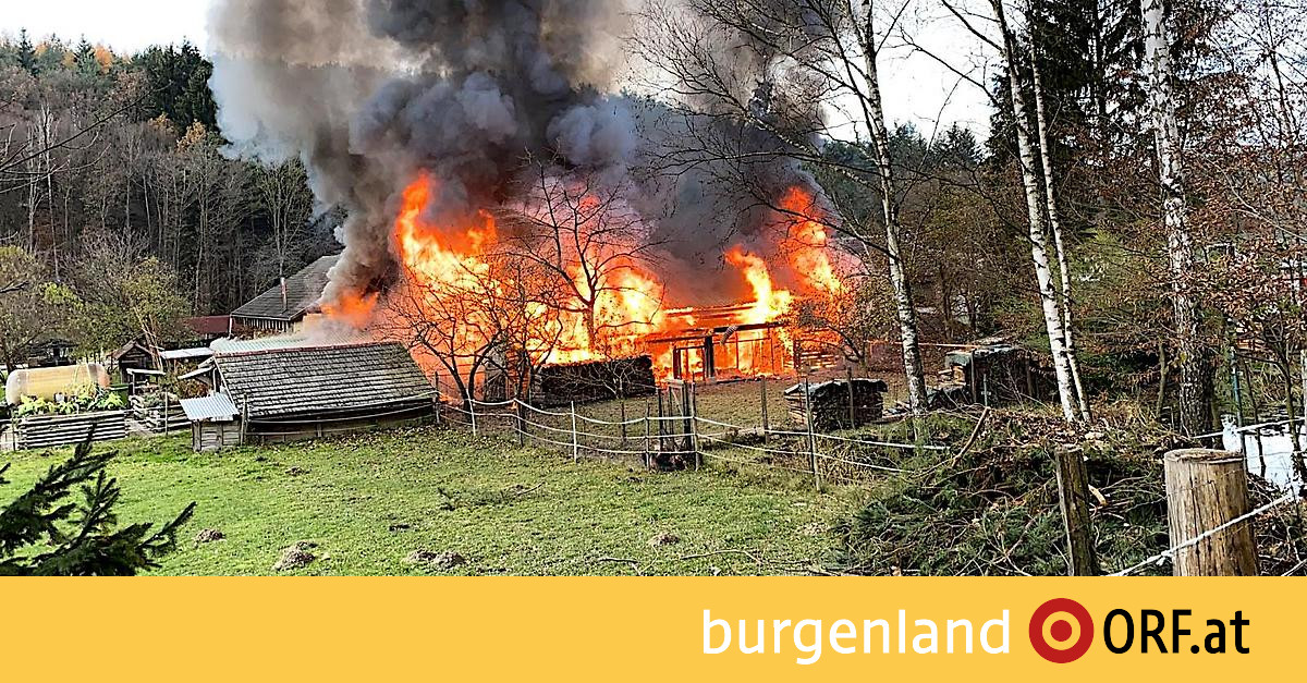 Hammerteich In Flammen