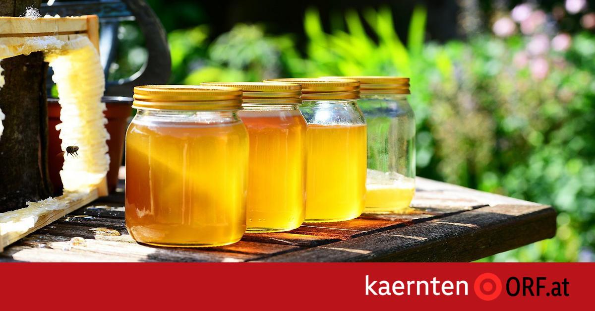 Gesundheit: Medizinischer Honig zur Wundversorgung