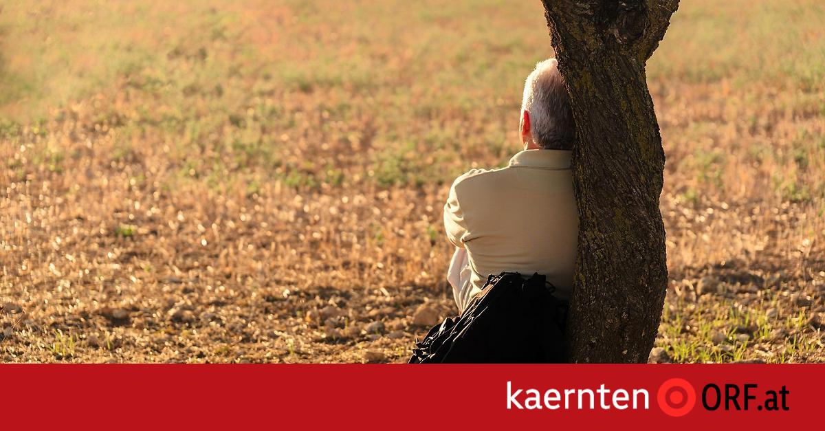 Online-Partnerbrsen im Vergleich - rematesbancarios.com