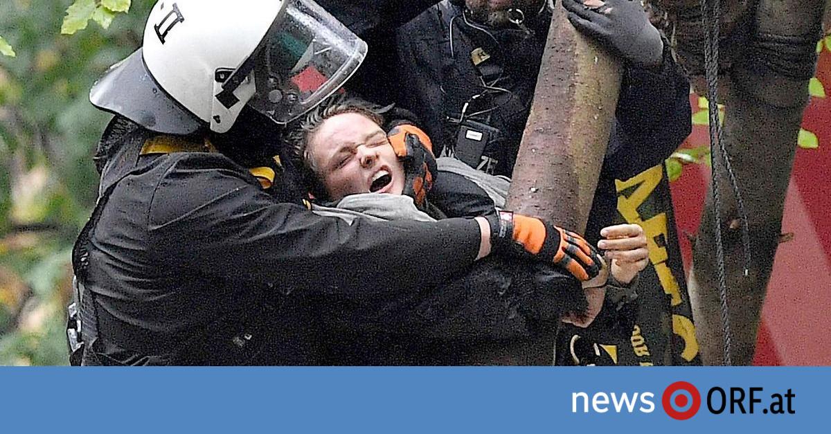 Kampf gegen Abholzung: Deutsche Polizei räumt Baumhäuser