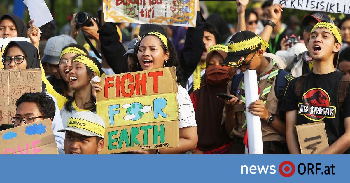 Weltweiter Klimastreik: Millionen Menschen auf der Straße