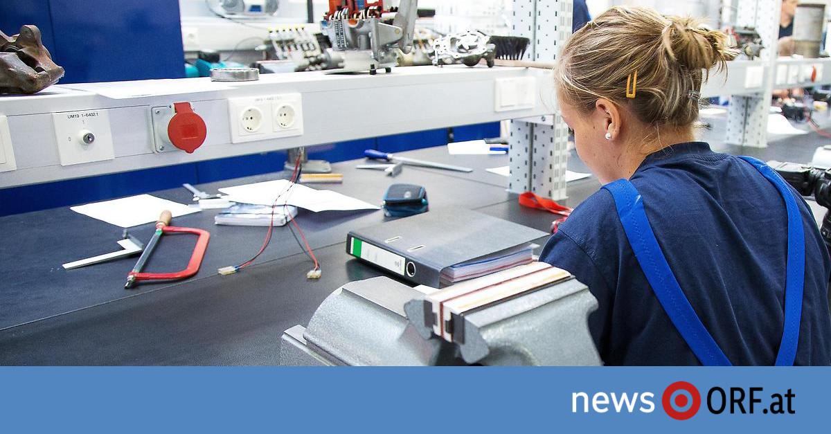 Berufswahl: Gleicher Job, ungleiches Gehalt - news.ORF.at
