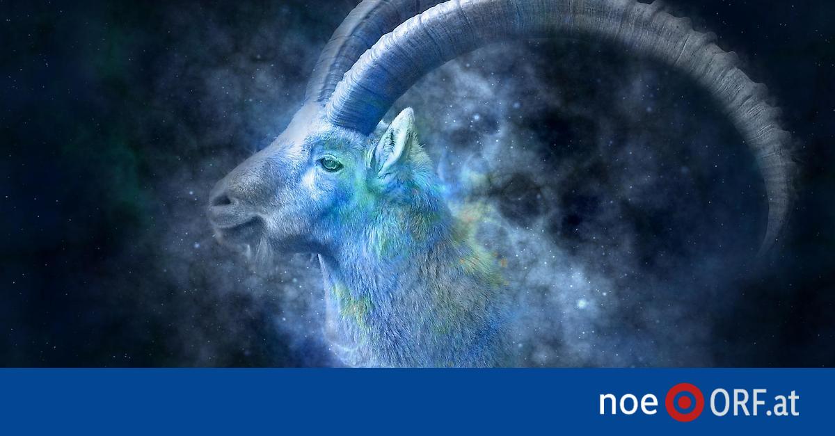 Horoskop 2021 Noe