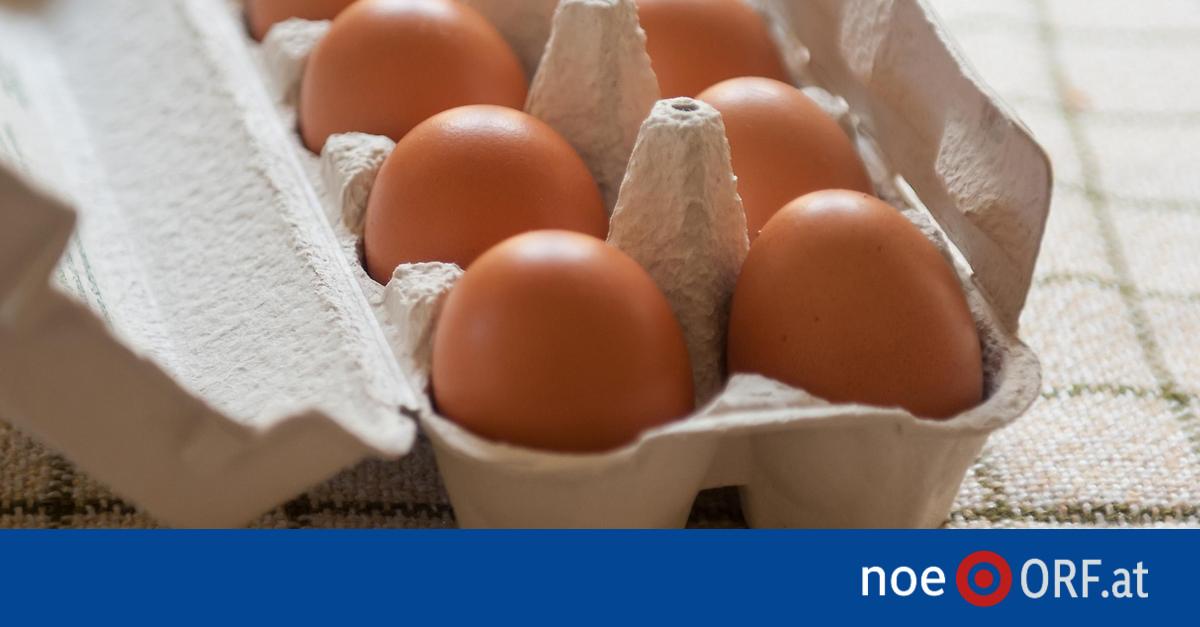 Aufstoßen Faule Eier