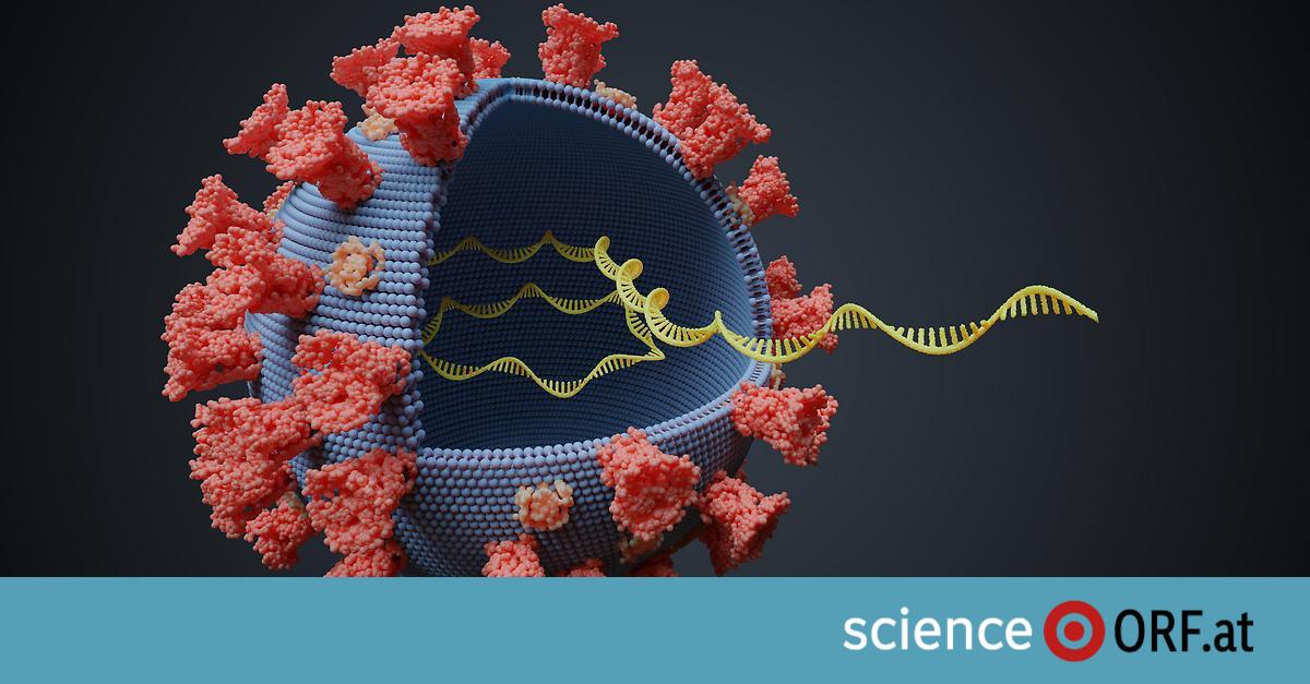 Möglicher Grund für anhaltend positive PCR-Tests