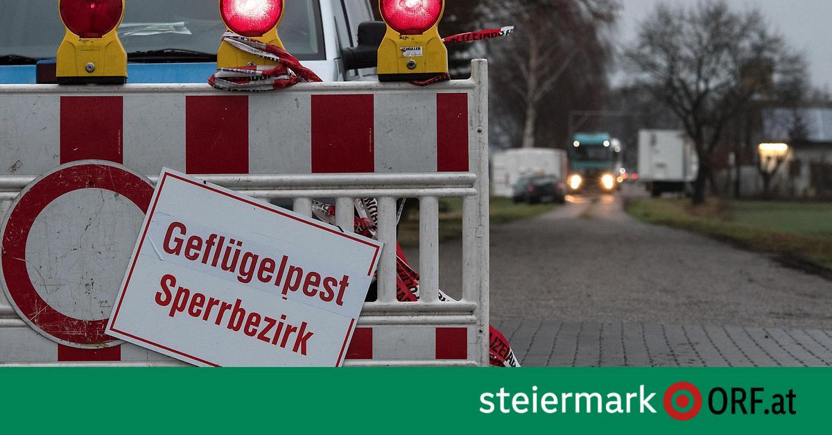 Steiermark Risikogebiet